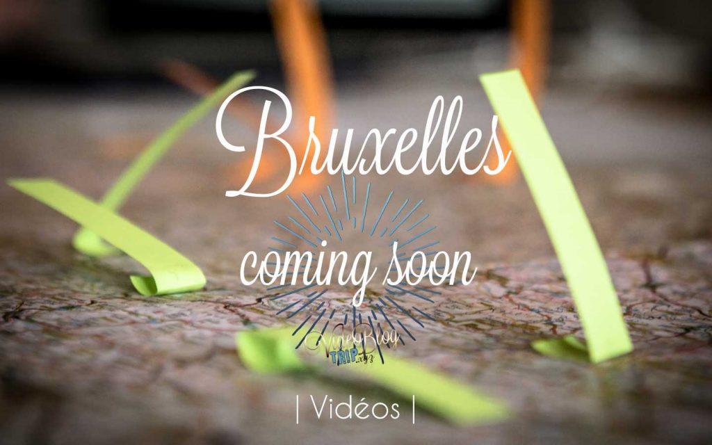 La capitale Belge en vidéo